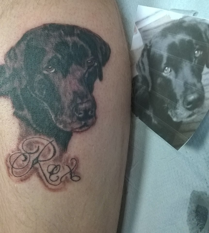 Tattoo, Black & Grey, Dog, Portrait