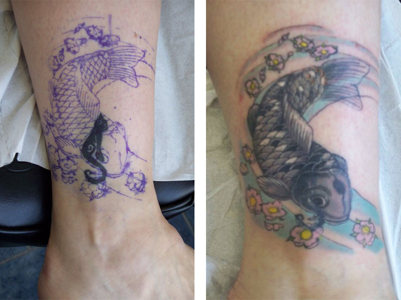 Cover Up, Before, After, Cat, Koi