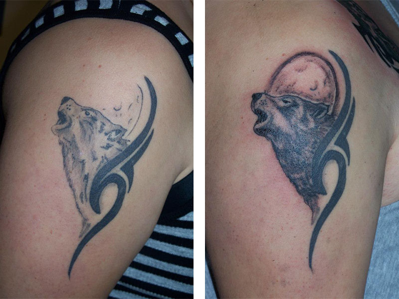 Cover Up, Before, After, Wolf, Moon