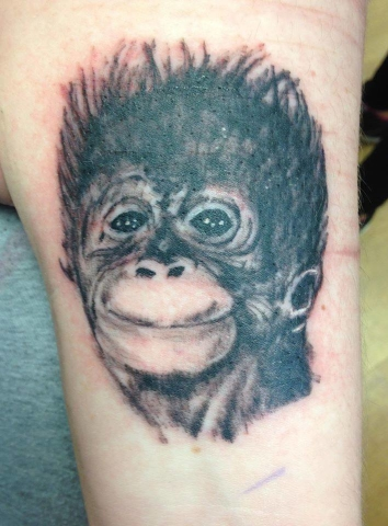 Tattoo, Black & Grey, Monkey, Realism, Animal